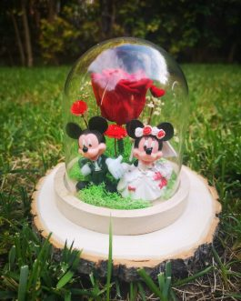 Mini cúpula Mickey & Minnie boda